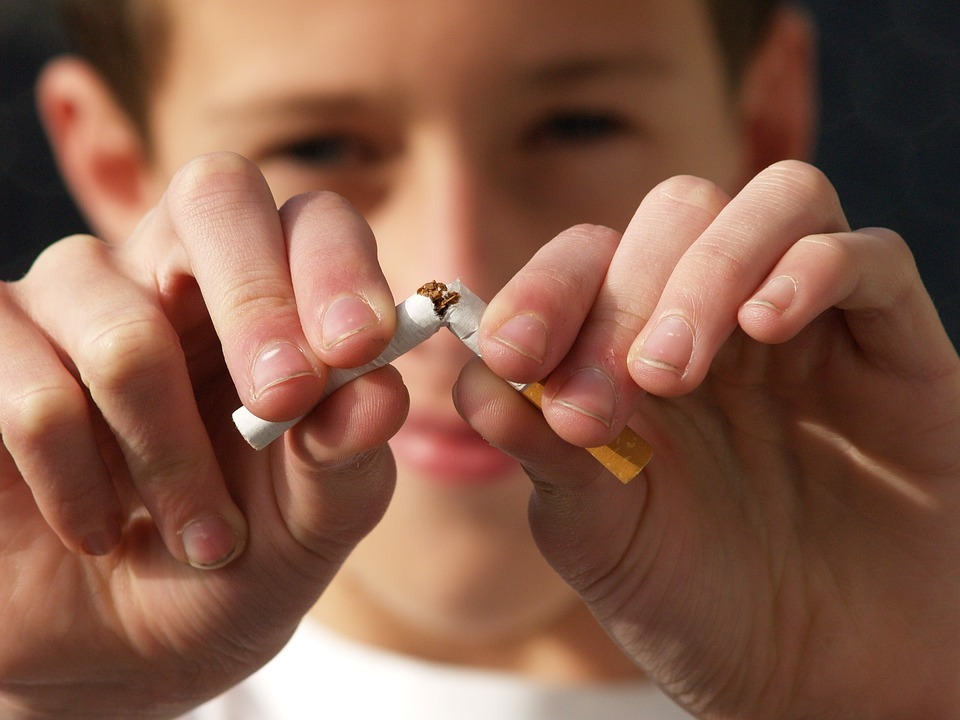 Future of tobacco industry